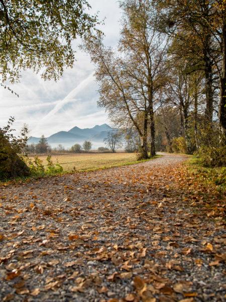 Wandergenuss im Herbst