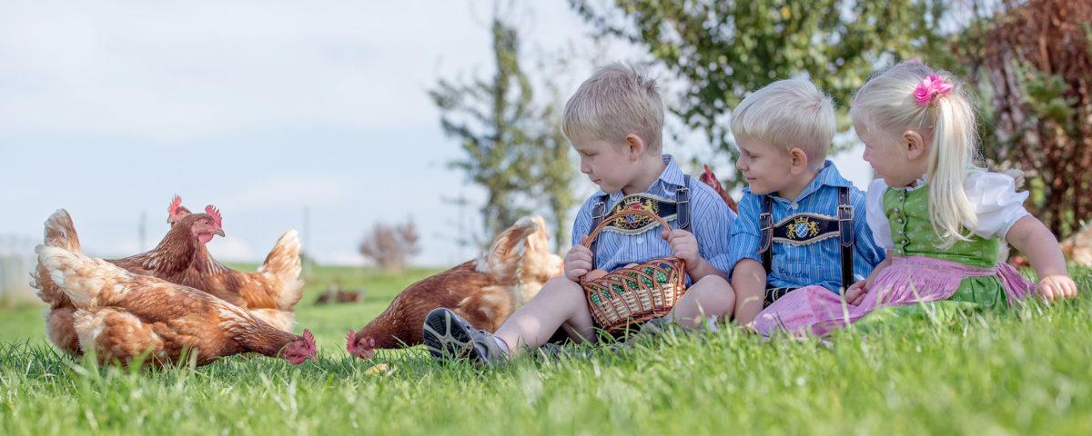 Pensionen und Bauernhöfe Chiemsee