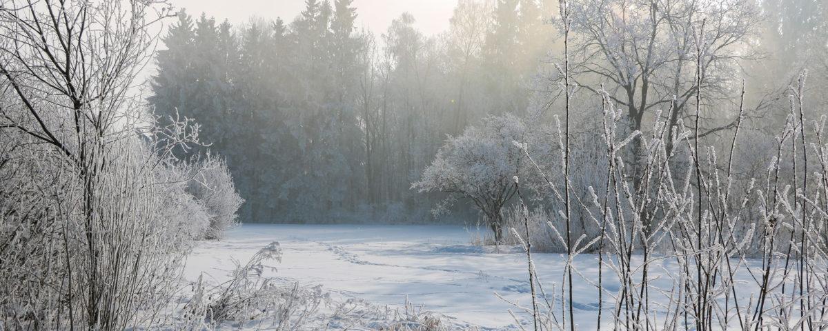 Winter in Prien am Chiemsee