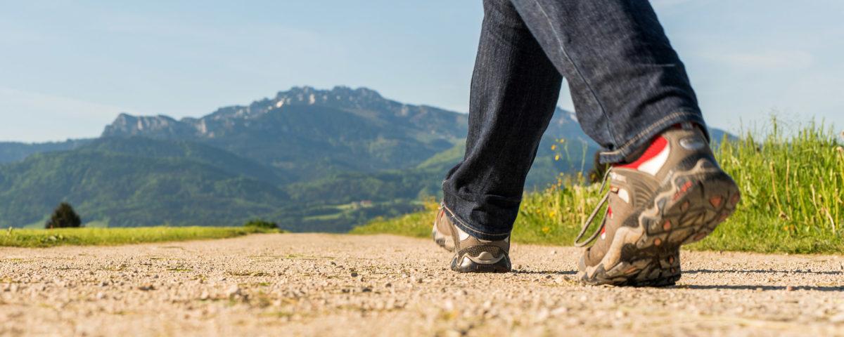 Wandern im Chiemsee Alpenland