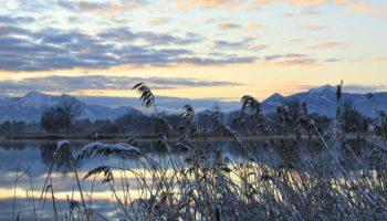 Mayall_2012_winter_D14040