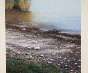 Bild 1 Chiemsee Schafwaschener Bucht